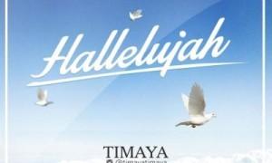 Timaya-Halleluyah-Art-300x180
