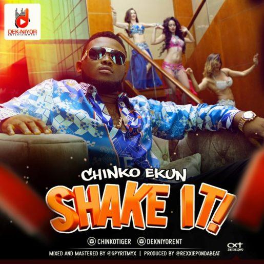 chinko-ekun-shake-it-song-art-720x720